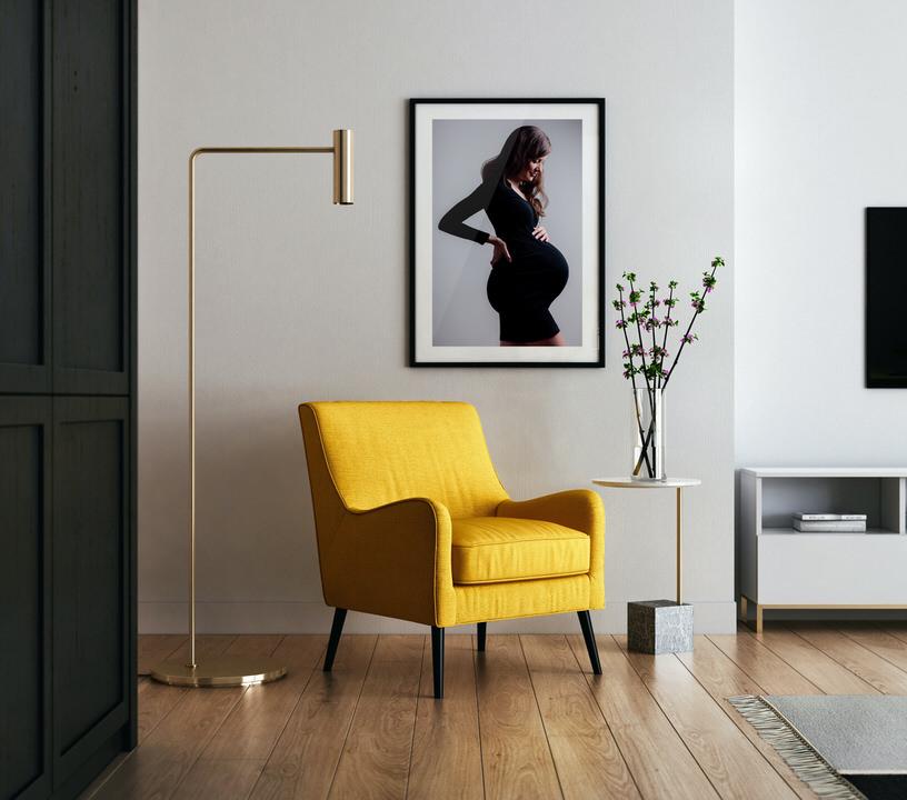 sala con cuadro de embarazada